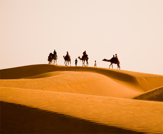 Camel safari in the sand dunes in the Thar Desert, Jaisalmer