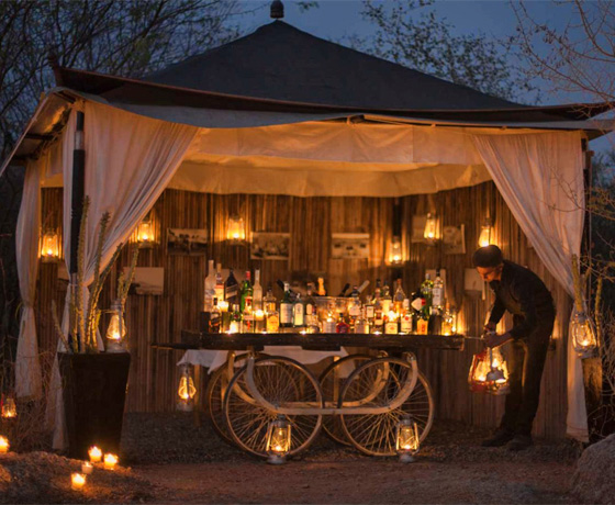 Evening under the starry sky at the luxury camp SUJAN Jawai Bandh
