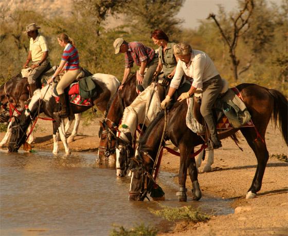 Vacation To India , safari in Rajasthan